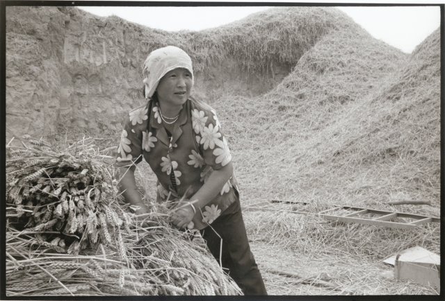 Woman with Wheat